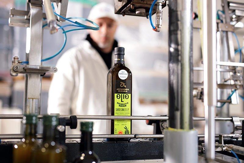 Lavorazione Olio Accademia Olearia Alghero Sardegna